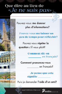 Poster: Instead of I Don't Know LOTE - FRENCH